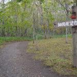 細岡展望台の遊歩道