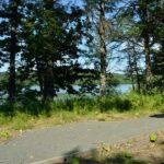 塘路湖畔歩道・フィト ンチッドの森歩道
